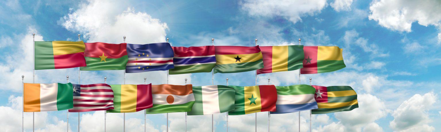 Les drapeaux des pays dans lesquels intervient West'Af Réfrigération